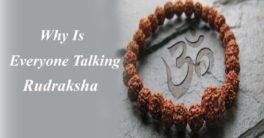 Rudraksha - pmkk gems